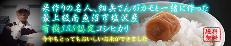 細矢さんの新潟県南魚沼産アイガモ有機コシヒカリ